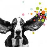 Brandwatch, Anbieter von Software für Social Media Monitoring