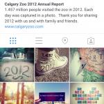 Calgary Zoo Instagram Jahresbericht