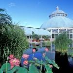 New York Botanical Garden Social Media